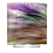 Eye On The Past Shower Curtain