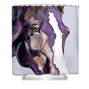 Eye On The Prize Shower Curtain