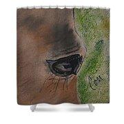 Eye To Eye Shower Curtain