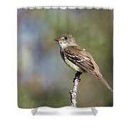 Eye To The Sky Shower Curtain