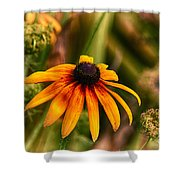 Eye To The Sun Shower Curtain