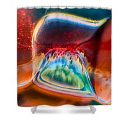Eyeland Shower Curtain
