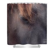 Eyes Of The Soul Shower Curtain