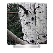Eyes Of The Trees Shower Curtain