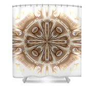 Ezio's View Shower Curtain