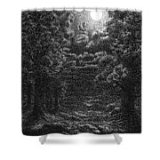 Pen And Ink Clouds 1 Shower Curtain