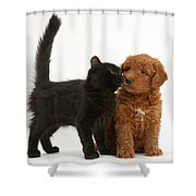 F1b Goldendoodle Pup With Kitten Shower Curtain