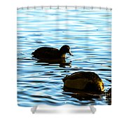 F2110927 Shower Curtain