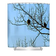 F2110987 Shower Curtain