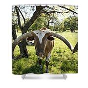 Fabulous Texas Longhorn Shower Curtain