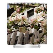 Facades And Fruit Trees Shower Curtain