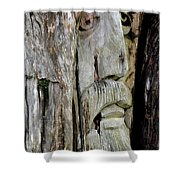 Face In The Forest Shower Curtain