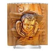 Face Of An Angel Shower Curtain