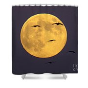 Face On The Moon Shower Curtain