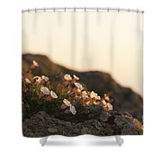 Face The Light Shower Curtain