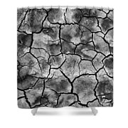 Facing The Dirt  Shower Curtain