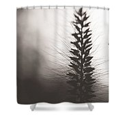 Fade Into You Shower Curtain