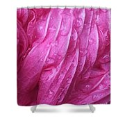 Faded Blossom Shower Curtain