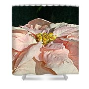 Faded Coral Shower Curtain