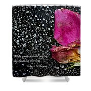 Faded Rose - Youth And Age Shower Curtain