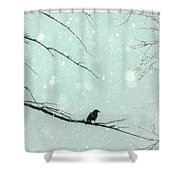 Abstract Faded Winter Shower Curtain