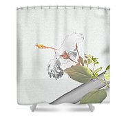 Fading Flower Shower Curtain