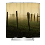 Fading Into The Fog Shower Curtain
