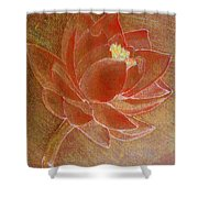 Fading Lotus Shower Curtain