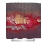 Fairground Ride Red Shower Curtain