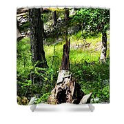Fairy Dwelling Shower Curtain