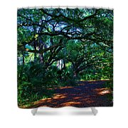 Fairy Path Shower Curtain