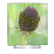 Fairy Ring Shower Curtain