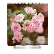 Fairy Roses Shower Curtain