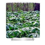 Fairy Umbrella Parade Shower Curtain