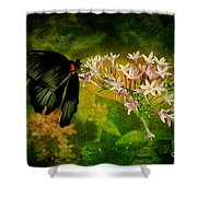 Fairyland Shower Curtain
