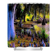 Fairyland Of Gnomes Shower Curtain