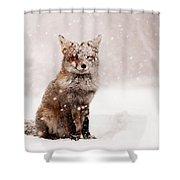 Fairytale Fox _ Red Fox In A Snow Storm Shower Curtain
