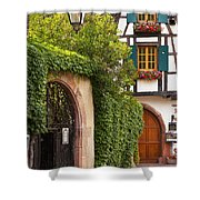 Fairytale Village Shower Curtain