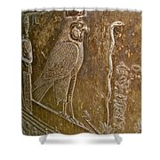 Falcon Symbol For Horus In A Crypt In Temple Of Hathor In Dendera-egypt Shower Curtain
