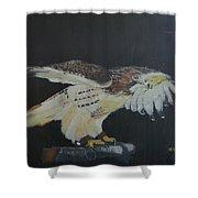 Falconry 5 Shower Curtain