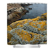 Falkland Islands Shower Curtain