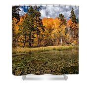 Fall Along Bishop Creek Shower Curtain by Cat Connor