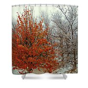 Fall And Winter 2 Shower Curtain