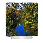 Fall At Kelly Park Shower Curtain