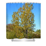Fall At The Dunes Shower Curtain
