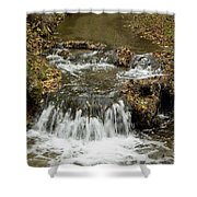 Fall At The Lower Falls Shower Curtain