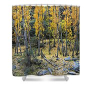 Fall At The River Shower Curtain