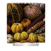 Fall Autumn Abundance Shower Curtain