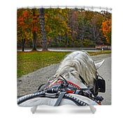 Fall Carriage Ride Shower Curtain