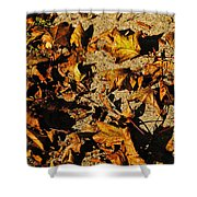 Fall Cleanup Shower Curtain